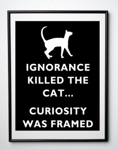 Ignorance Not Curiosity